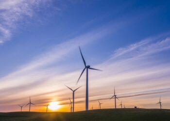 Mecanismos y redes de transferencia de tecnología relacionada con el cambio climático (TCC) en LAC. Experiencias en Eficiencia Energética y Energías Renovables.